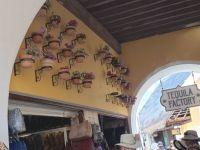Market in Costa Maya