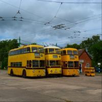 Three and a half trolleybuses