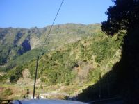 165-Madeira