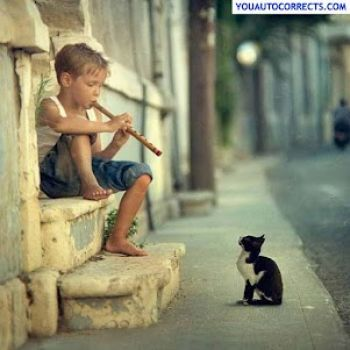 Kid plays for kitten