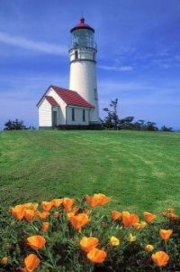 Lighthouse 130