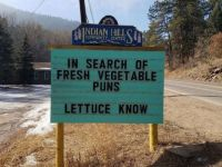 In search of fresh vegetable puns