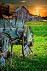 Barn & old wagon.jpg