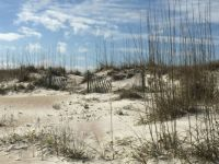 The Dunes at St. Augustine Beach