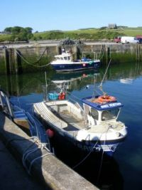 192. Harbour - Isle of Whithorn