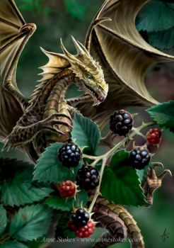 Dragon and Berries