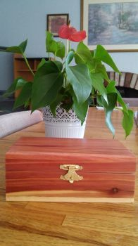 Pepper's Wooden Box