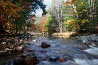 Mid Fork Wfld River Massachusetts
