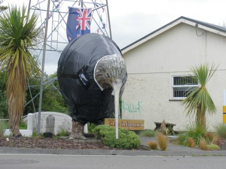 New Zealand-Kiwi in Eketahuna