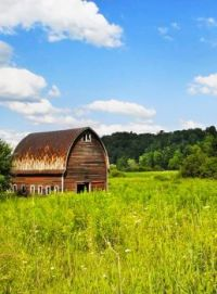 Curved Roof Barn in the Meadow....