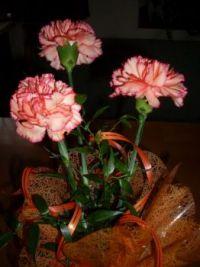 Birthday bouquet ...
