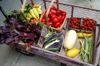 Wagon of Garden Vegetables