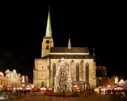 The Cathedral of Plzen and the Christmas tree for the Ank