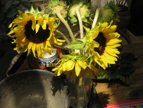 sunflowers l