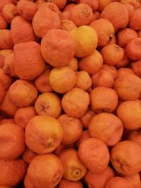 Oranges...again...