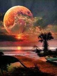 Moon Sensation