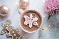hot chocolate with ginger bread