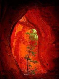 ..Boynton Canyon ...Sedona.. Az