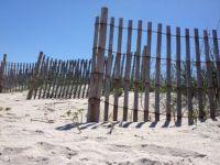 Playalinda Beach, Titusville, FL