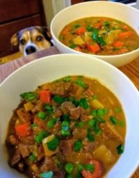 Dog getting a nose-ful of Beef Stew aromas