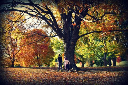 Autumn-in-Kansas-kids-playing-in-the-fall-foliage