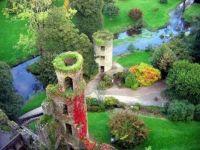 Blarney Castle, Cork, Ireland  5981