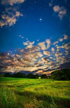 edge of light ~ phil koch