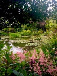 Claude Monet's Garden, in Giverny, France