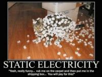 funny-pictures-168