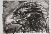 Gentle Eagle, painter Hjalmar Riemersma.
