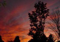 November evening sky