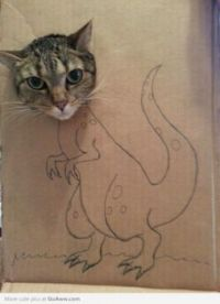 CUTE KITTISAURUS REX...HE IS NOT AMUSED...