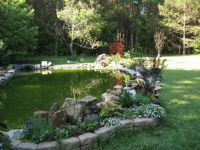 Pond and trellis June 11 2016