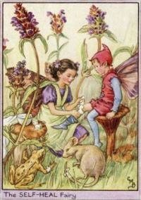 The Self-Heal Fairy (smaller size)