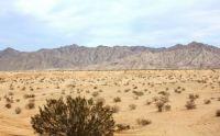 The desert outside of Yuma, AZ