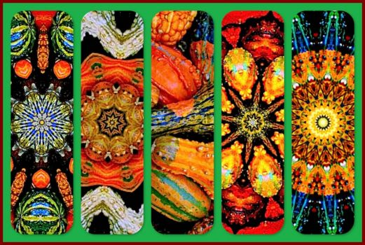 Gourds for Fall - KaleidoBOARDS!