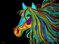 colorful-horse-head