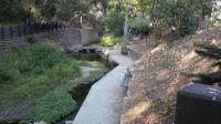 creek in SLO