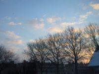 Sunrise (12 February 2021)