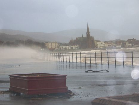 winter in Largs 8 12 2011 015