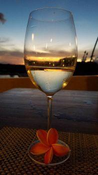 Plumeria & wine