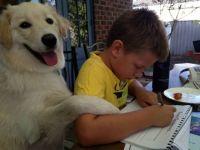 Jaffy helps Luke with homework.