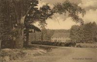 Hofjagdrevier Göhrde