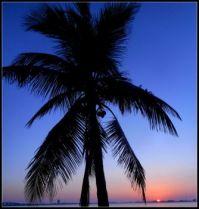 Sunset 12-21-17