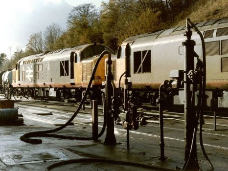 Class 37s 37676 37681 at Buxton Railway Depot - 13th Nov 1988