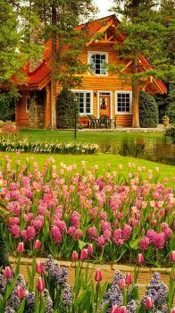 Beautiful cabin with English garden