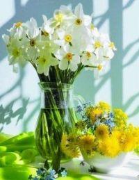 Virág (4)