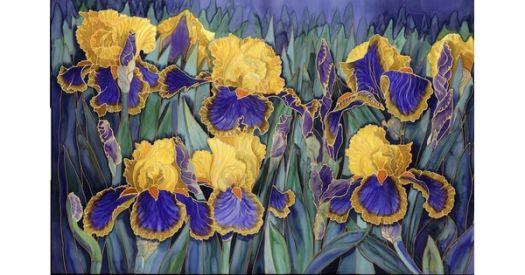 Yellow & Blue Iris - Artist Gillian Radford