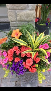 Beautiful Brightly Coloured Container !