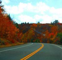 Autumn color2